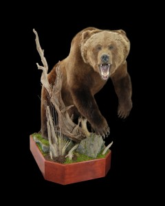 hubbard bear 167-P
